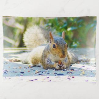 Sunbathing Squirrel トリンケットトレー