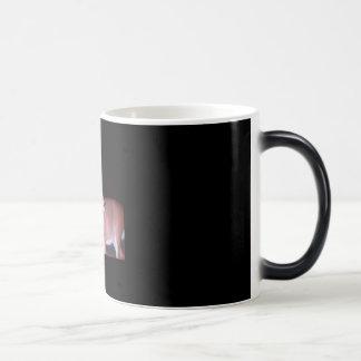 SUNP0177 モーフィングマグカップ