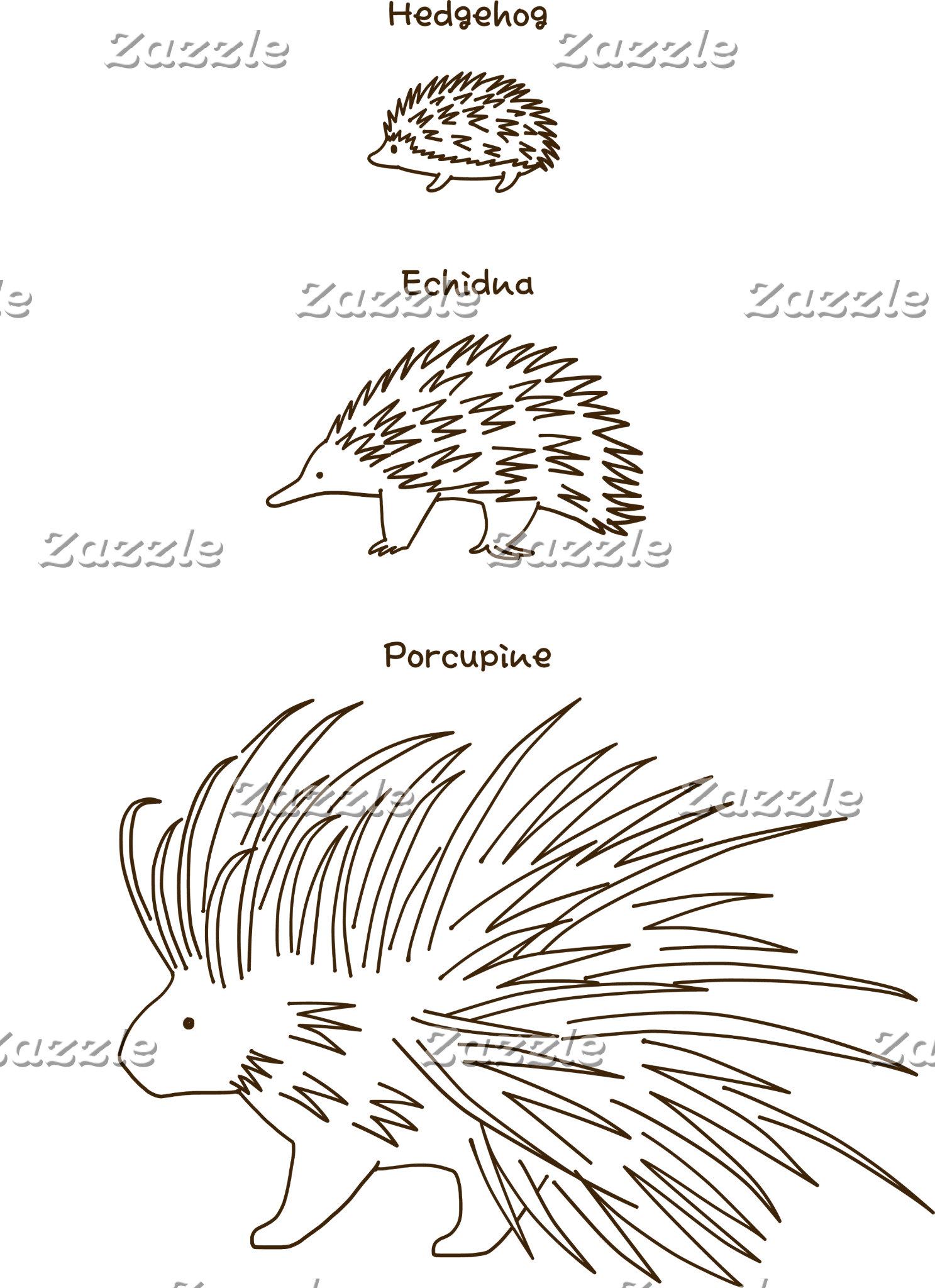 【はりーず(英語-茶】 Hedgehog, Echidna, Porcupine (En-brown