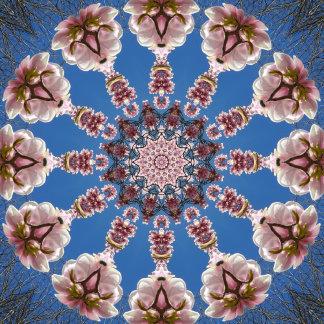 _ Spring Nature-Mandalas