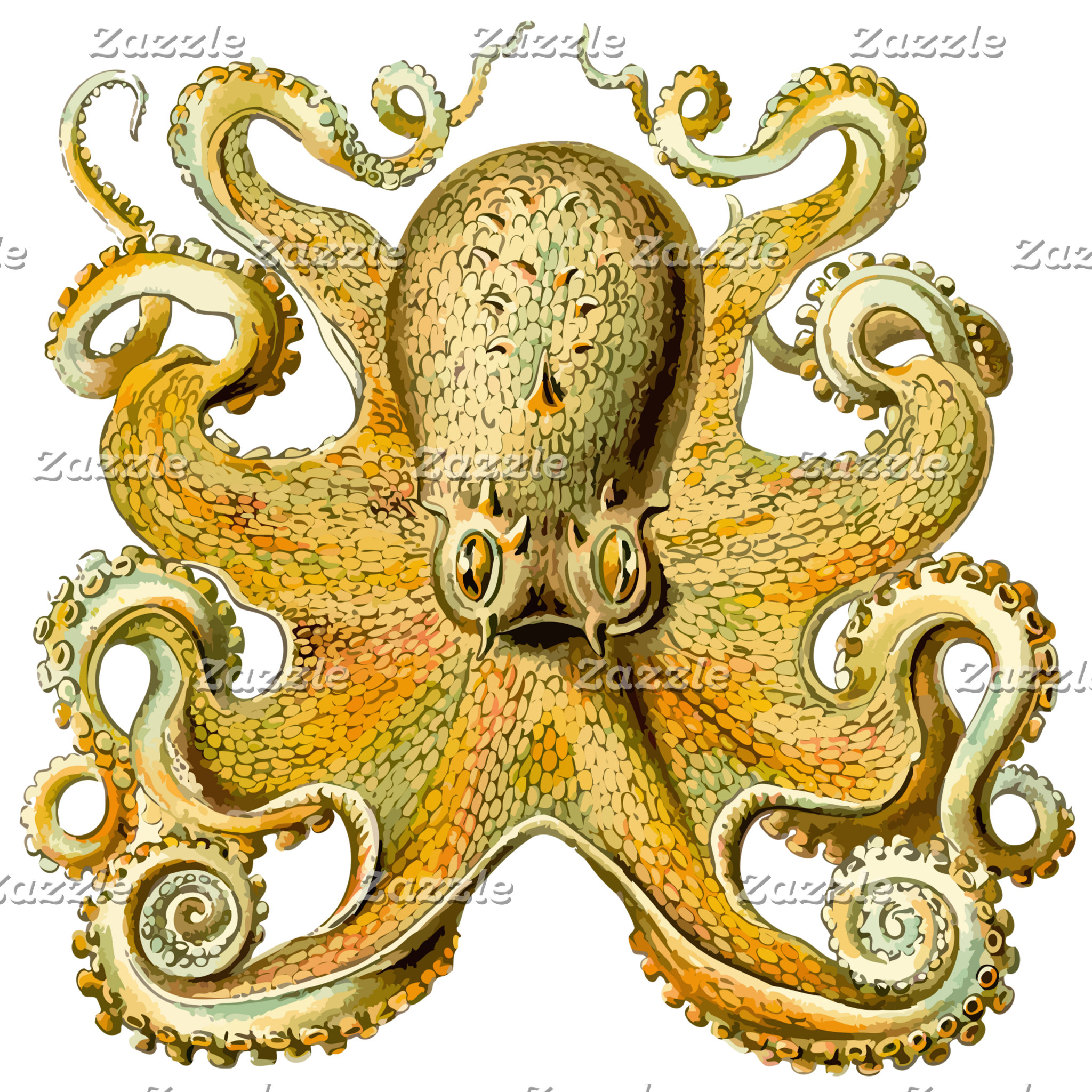 Gold Squid Kraken