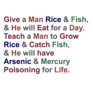 Rice and Fish Proverb Humor