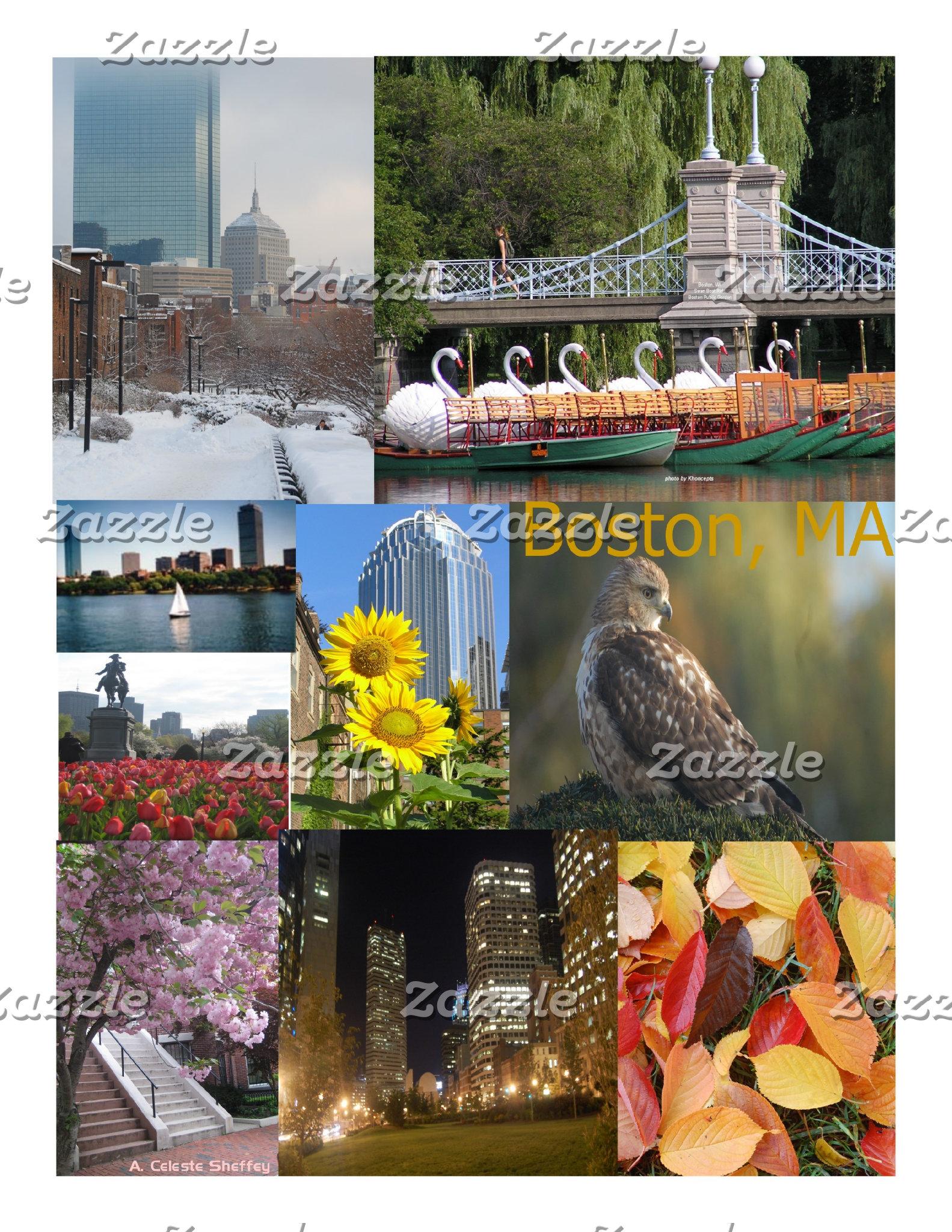 Boston, MA Photo Collages
