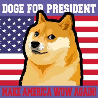 Doge president - doge-shibe-doge dog-cute doge