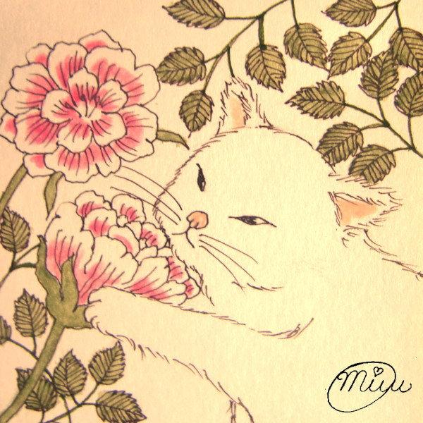 【ピンクローズと白猫ちゃん】