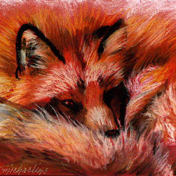 Wildlife Art and Gifts