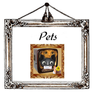 Pet Place