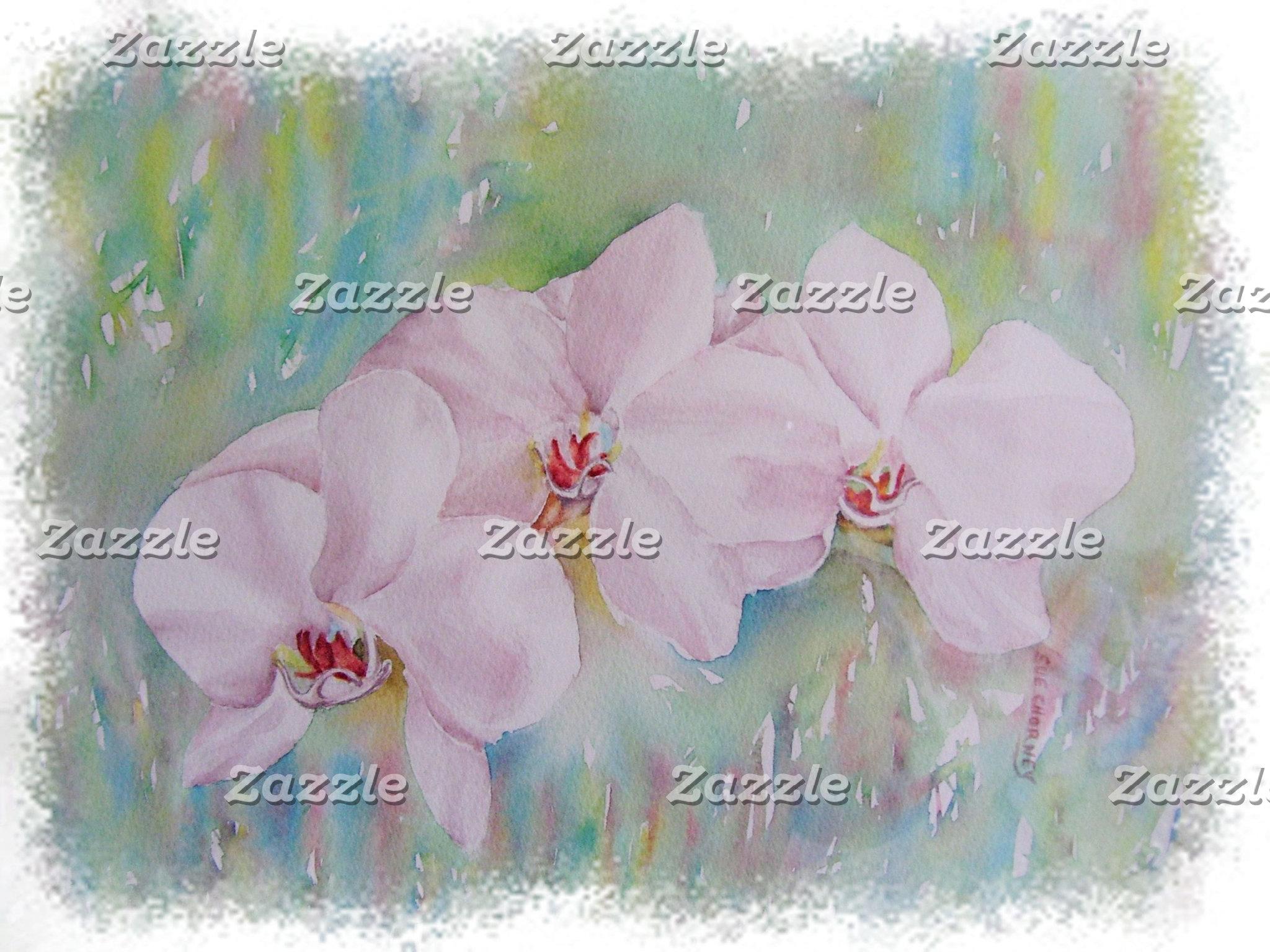 Orchids - THREE WHITE