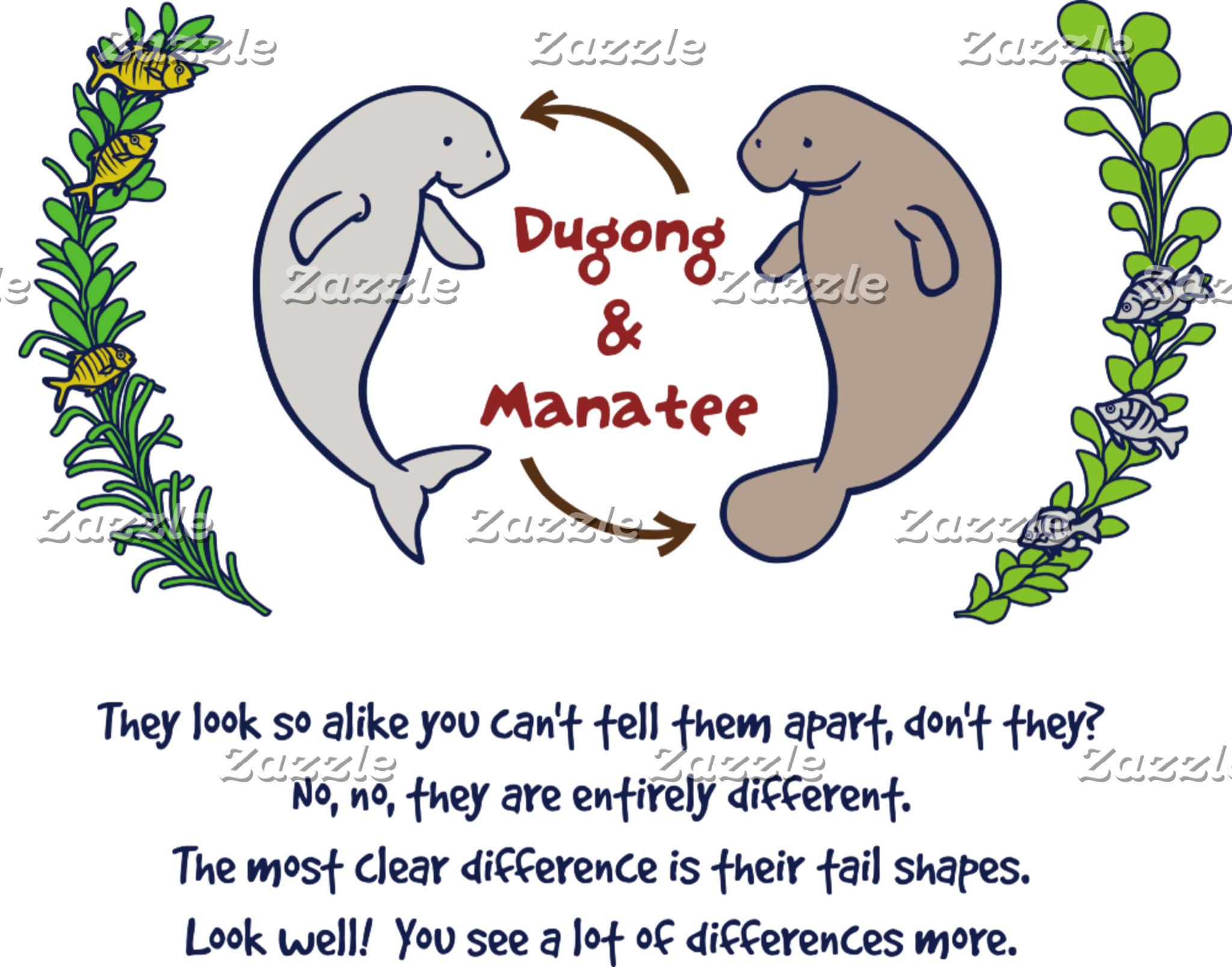 【ジュゴンとマナティー(カラー)】 Dugong & Manatee