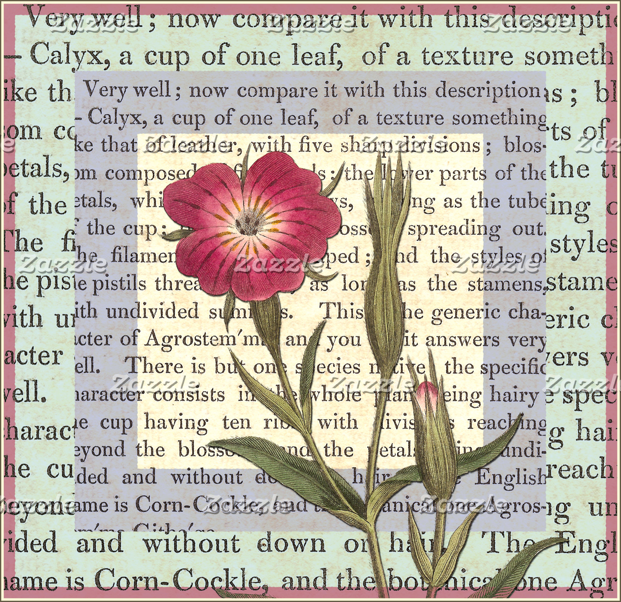 Conversations on Botany