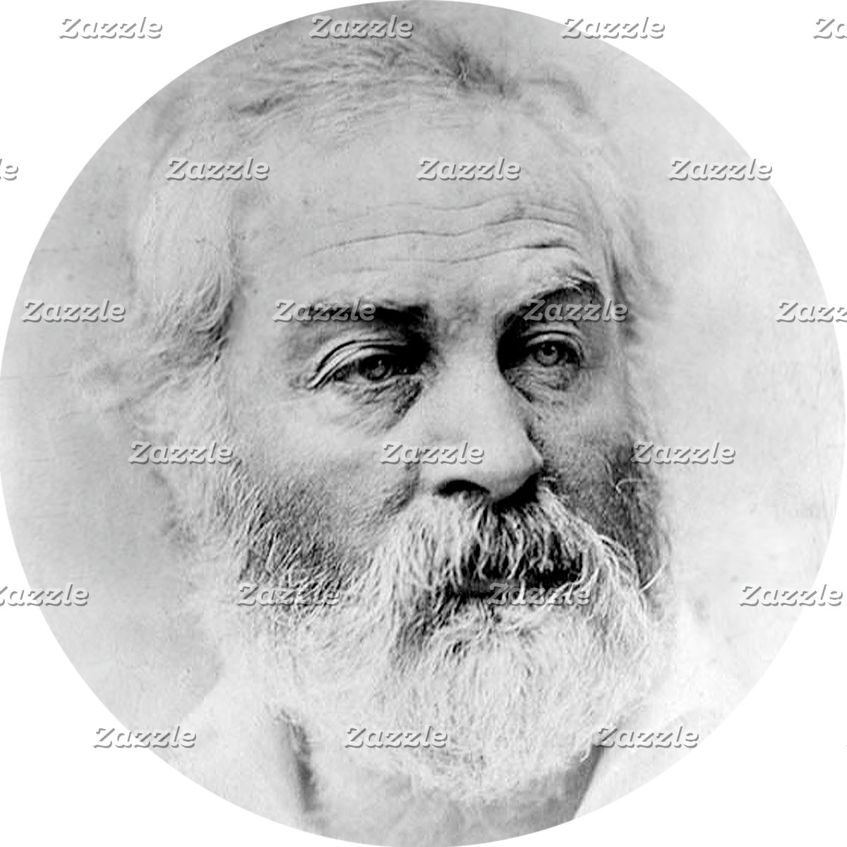 Whitman's Civil War