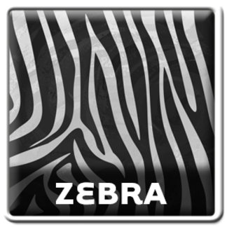 Wild Me Zebra