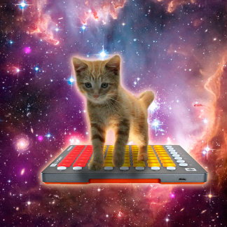 keyboard cat - tabby cat - kitty