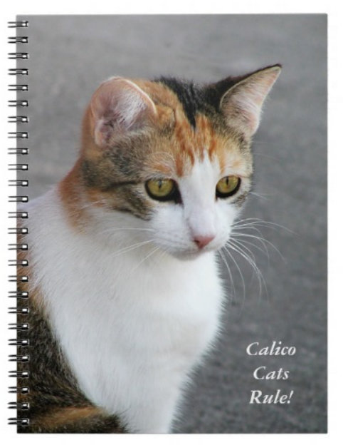 Cat Mousepads, Notebooks