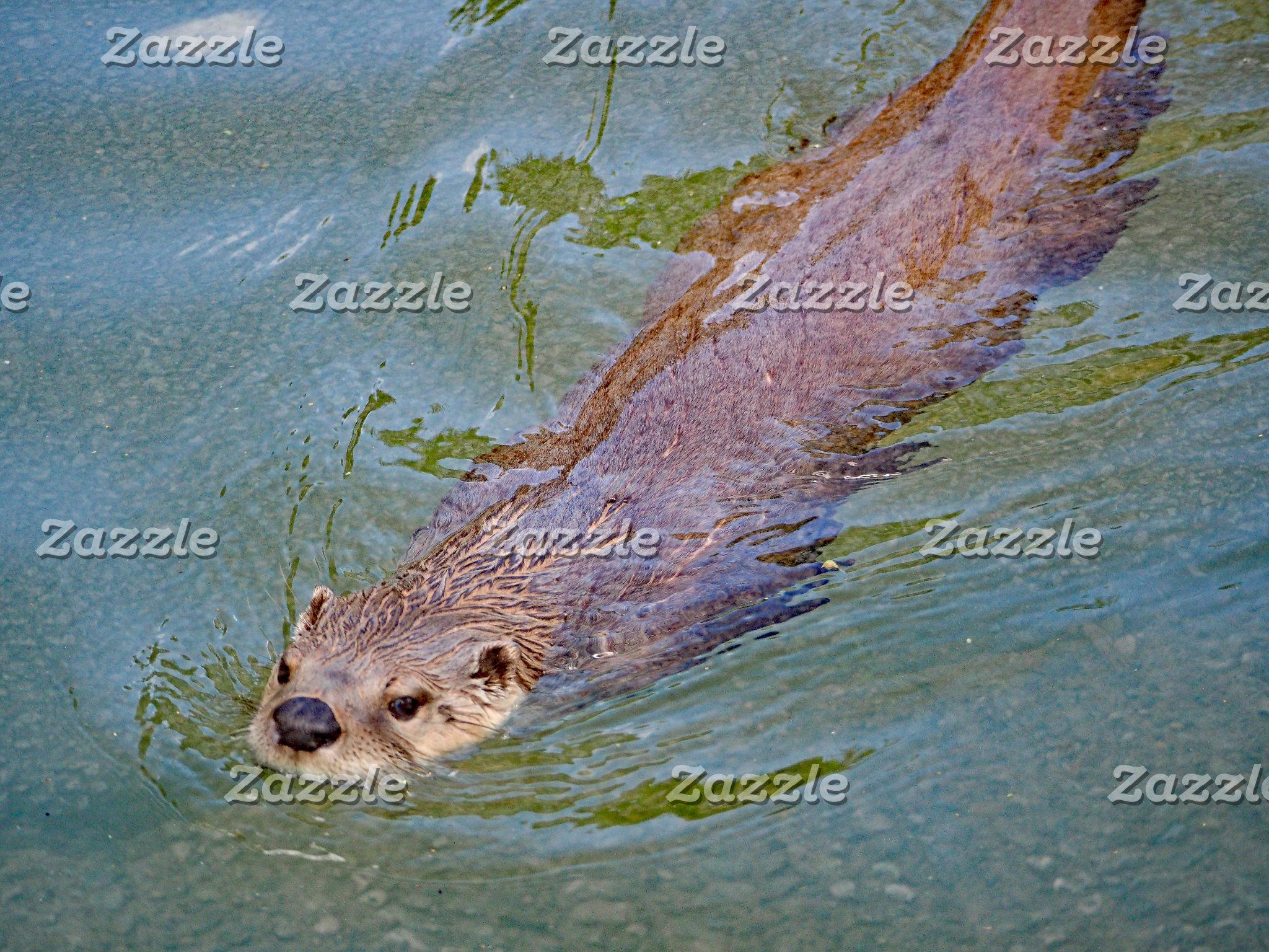 Otter 201
