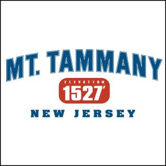 Mt. Tammany