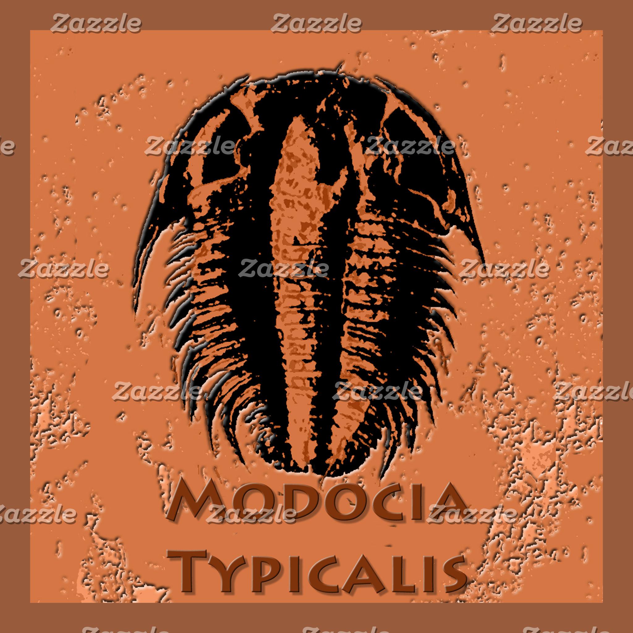 Modocia Typicalis