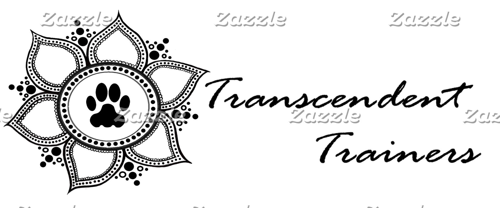 Transcendent Trainer Stuff