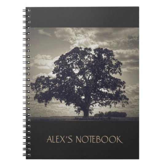 Notebooks, Pens, & Office Products