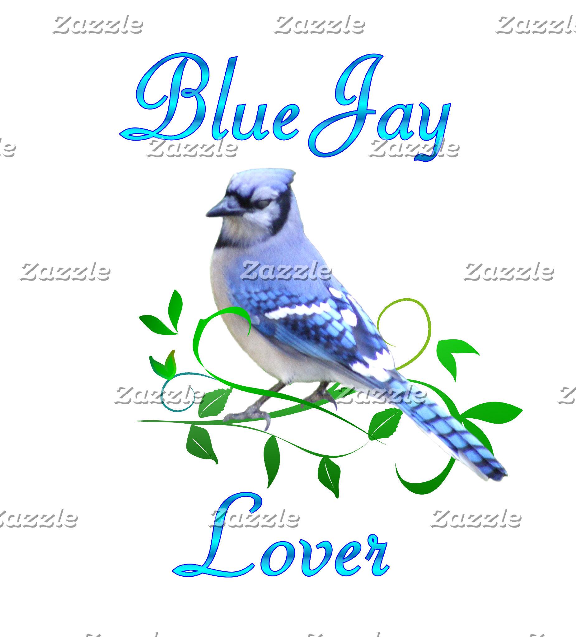 Blue Jay Lover