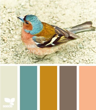 Autumn Color Palette