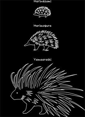 【はりーず(ローマ字-白】Hedgehog, Echidna, Porcupine(Jp-white