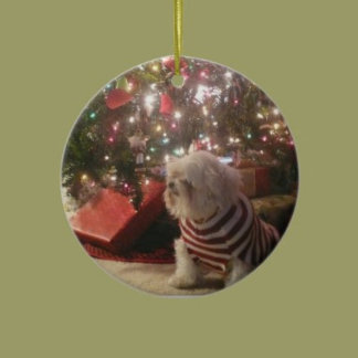 ORNAMENTS TEMPLATE ADD PET/PERSON PHOTO