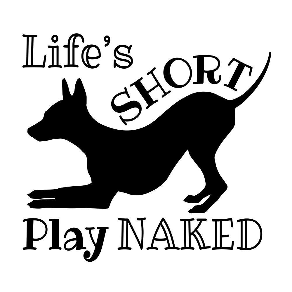 "AHT ""Lifes Short"""