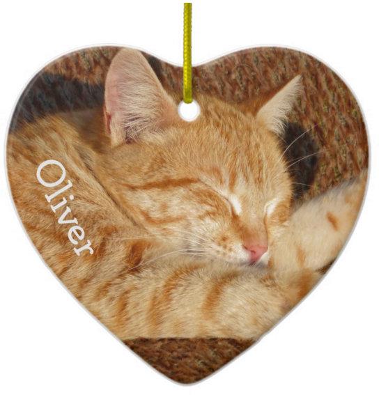 Personalized pet photo