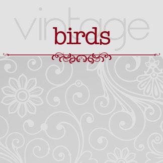 BIRDS Vintage