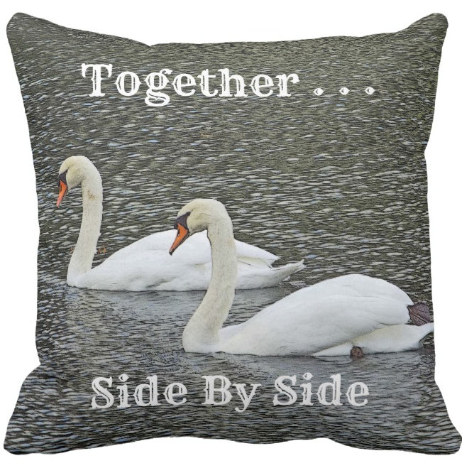 THROW PILLOWS/ INDOOR AND OUTDOOR