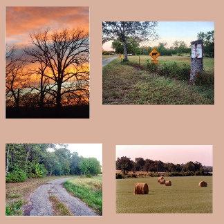 Farm Times