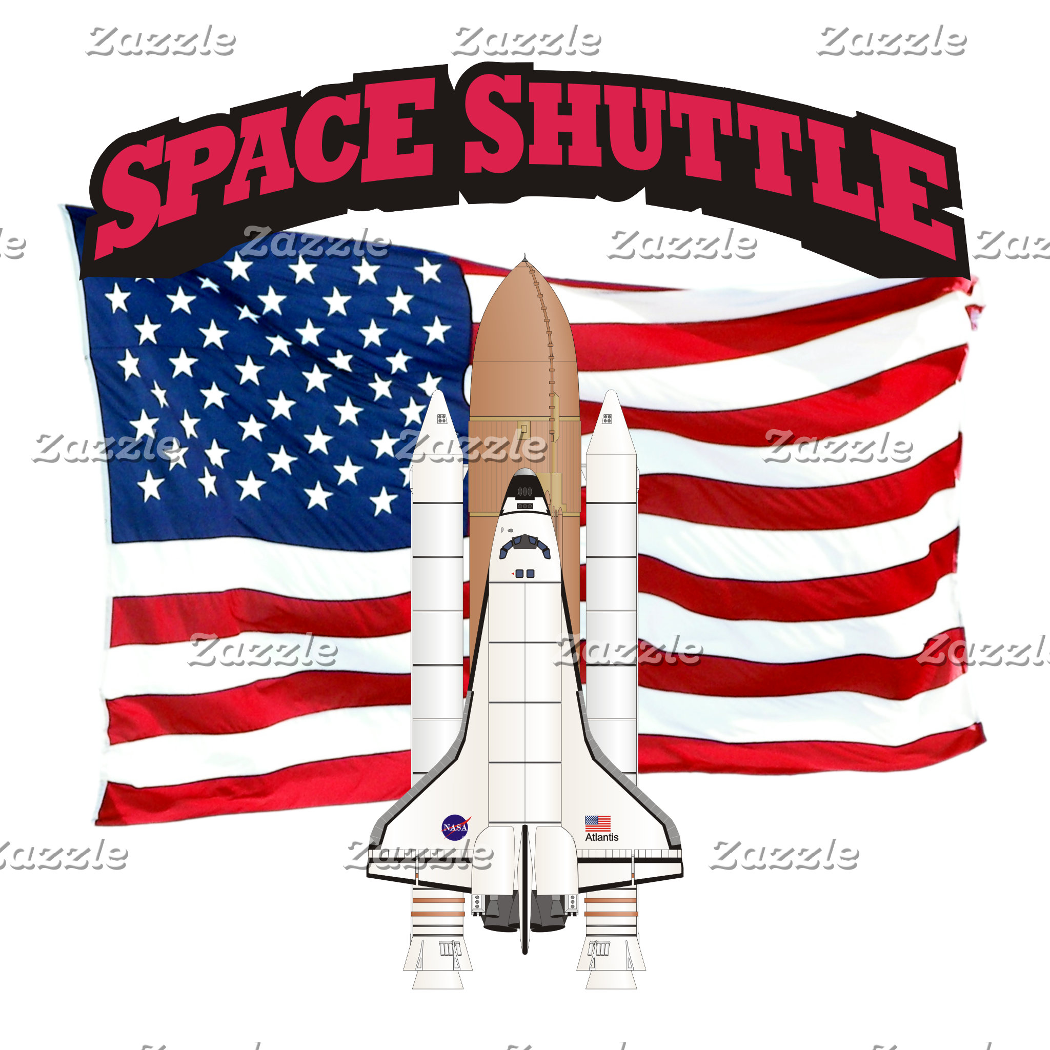 Space Shuttle and Flag