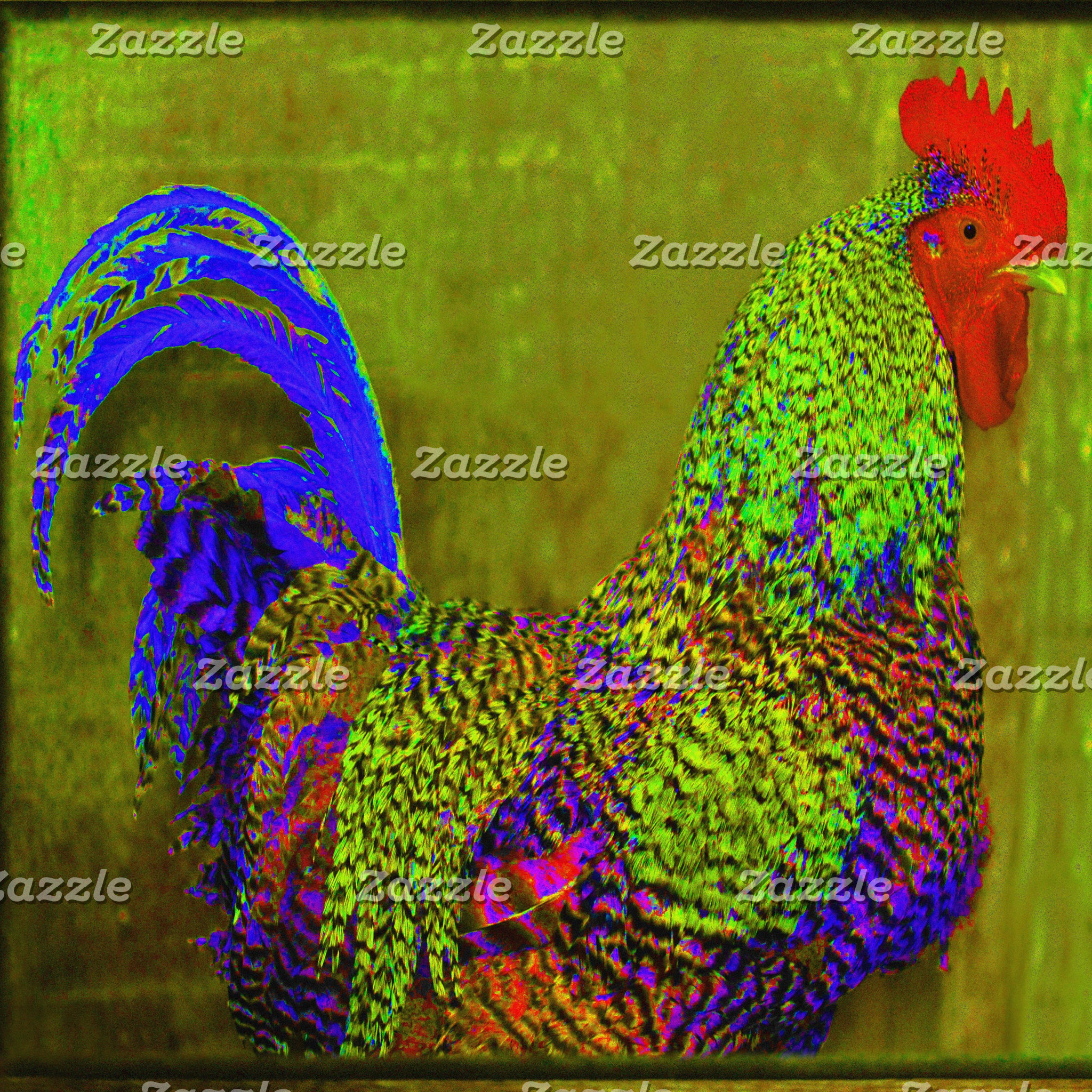Rooster/Chicken Designs