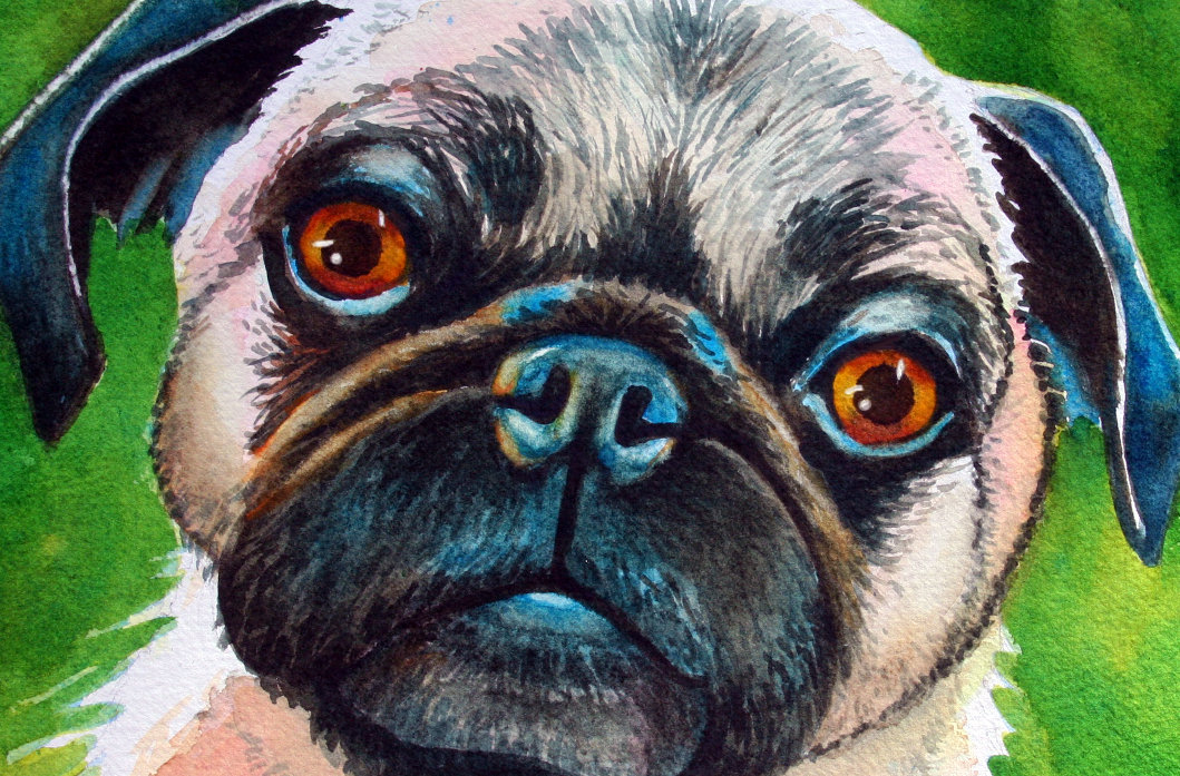 Pug Portrait Dog Painting