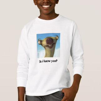 Tシャツをからかいます Tシャツ