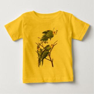 Tシャツ: インコ-ジョンAudubon著… ベビーTシャツ