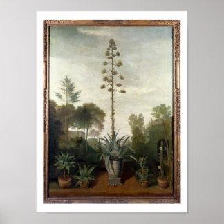 T33047植物園 ポスター