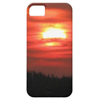 TaeDrgonArtの写真#4の携帯電話の箱 iPhone SE/5/5s ケース