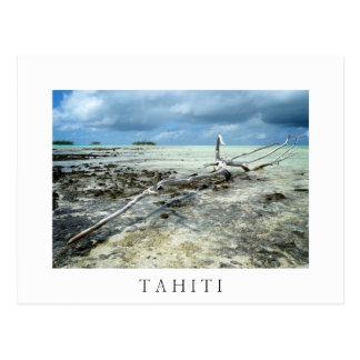 Tahiitiの白い文字の郵便はがきの死んだ木 ポストカード