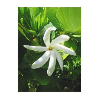 TahitianのGardenia キャンバスプリント