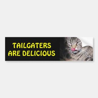 Tailgatersはおいしく気難しい子猫です バンパーステッカー