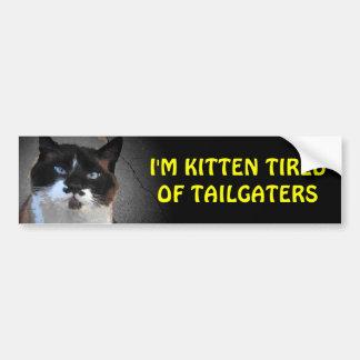 Tailgaters猫の立場に疲れている子ネコそれ バンパーステッカー