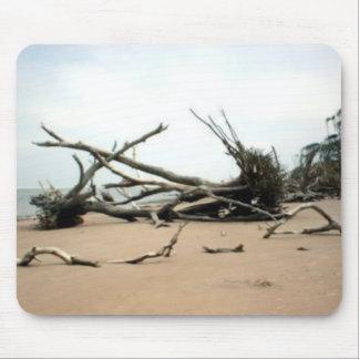 Talbotの島の流木の木 マウスパッド