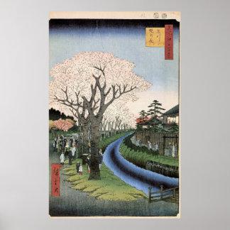 Tamaの川の銀行の桜 ポスター
