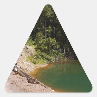 Tambrauw Moutainsの熱帯雨林 三角形シール