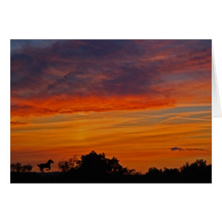 Taneytownの日没 カード