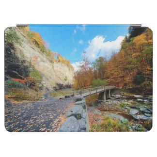 Taughannockは公園州立下ります iPad Air カバー
