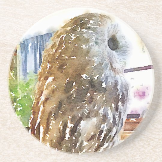 Tawny owl painted with watercolors コースター