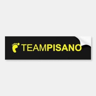 TeamPisanoのバンパーステッカー バンパーステッカー